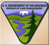 BUREAU OF LAND MANAGEMENT (BLM