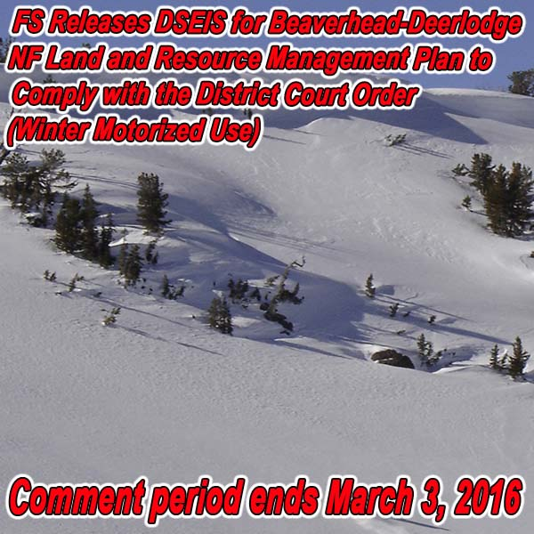 MONTANA - FS Releases DSEIS for Beaverhead-Deerlodge NF Land and Resource Manage
