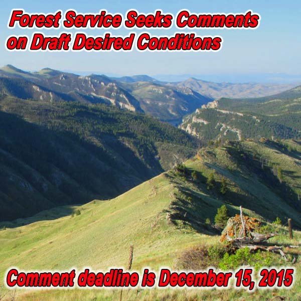 MONTANA - FS Seeks Comments on Draft Desired Conditions