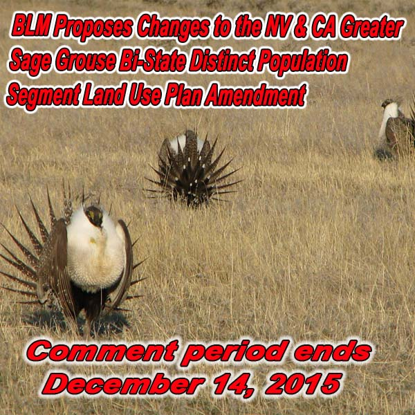 NEVADA - BLM Proposes Changes to the NV & CA Greater Sage Grouse Bi-State Distin