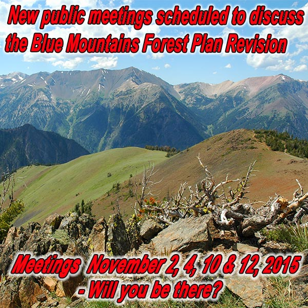 OREGON - New Public Meetings Scheduled to Discuss the Blue Mountains Forest Plan