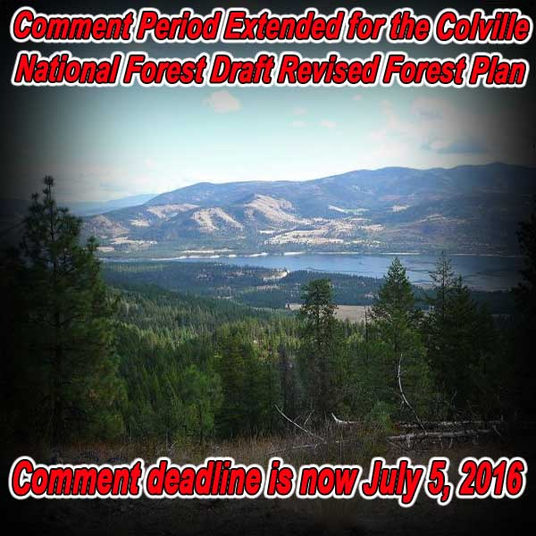 WASHINGTON - Comment Period Extended for the Colville Forest Draft Revised Fores