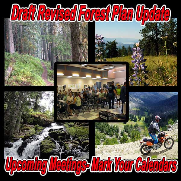 WASHINGTON - Draft Revised Forest Plan Update - Upcoming Meetings- Mark Your Cal